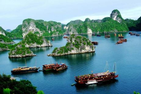 Book a cruise in Halong Bay