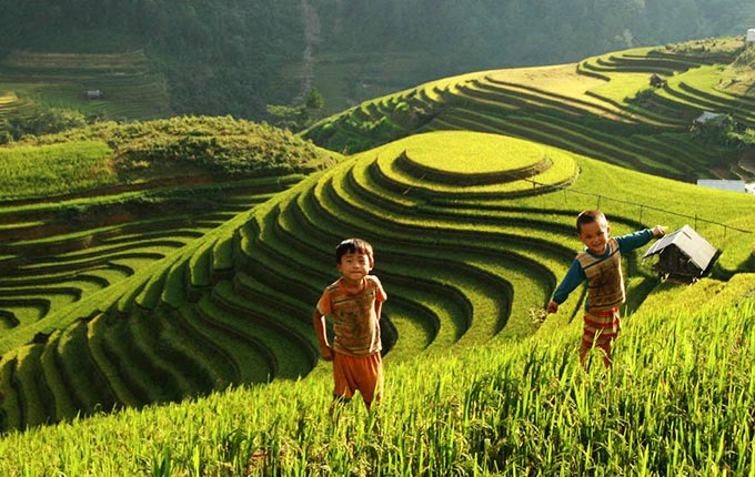 children-playing-in-the-fields-in-Mu-Cang-Chai