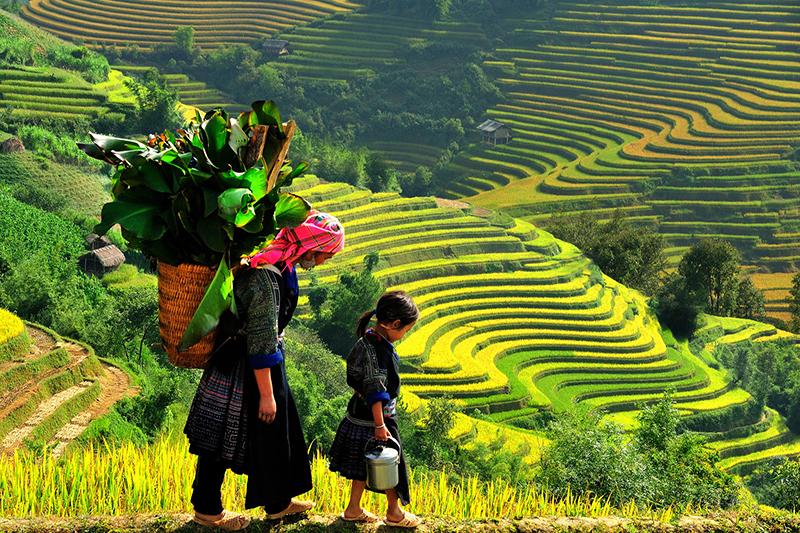 Vietnam Best Trekking Tour
