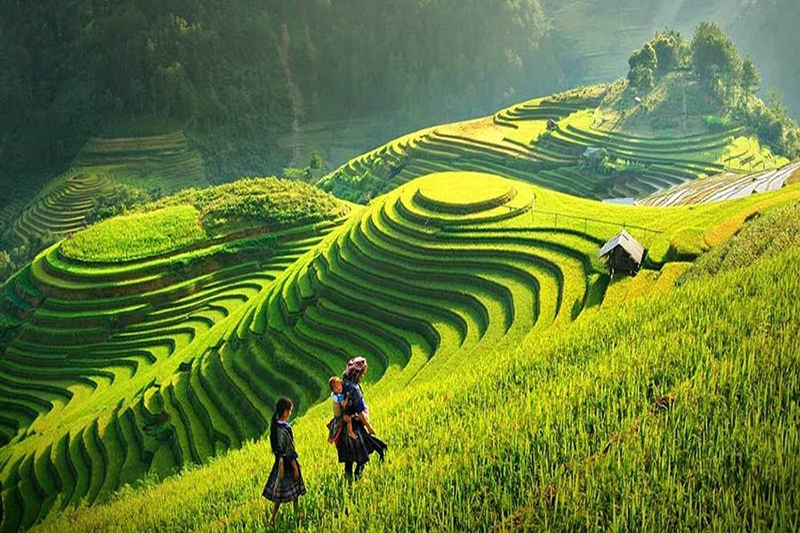Special Luxury Vietnam tour