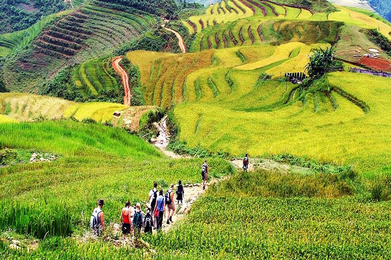 Northwest trekking tour