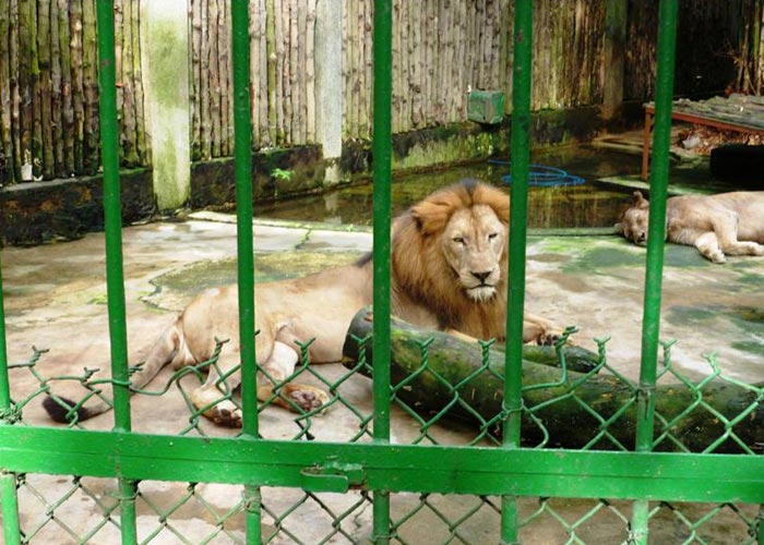 Ho Chi Minh City Zoo & Botanical Gardens