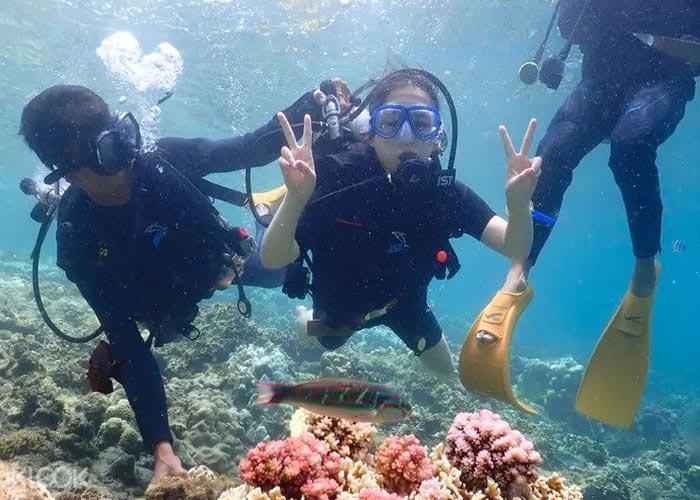 Discovery Nha Trang islands