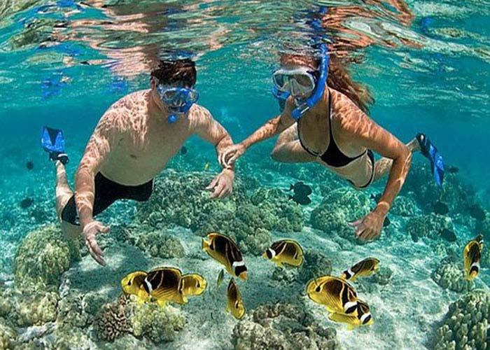 Diving and snorkeling in Nha Trang